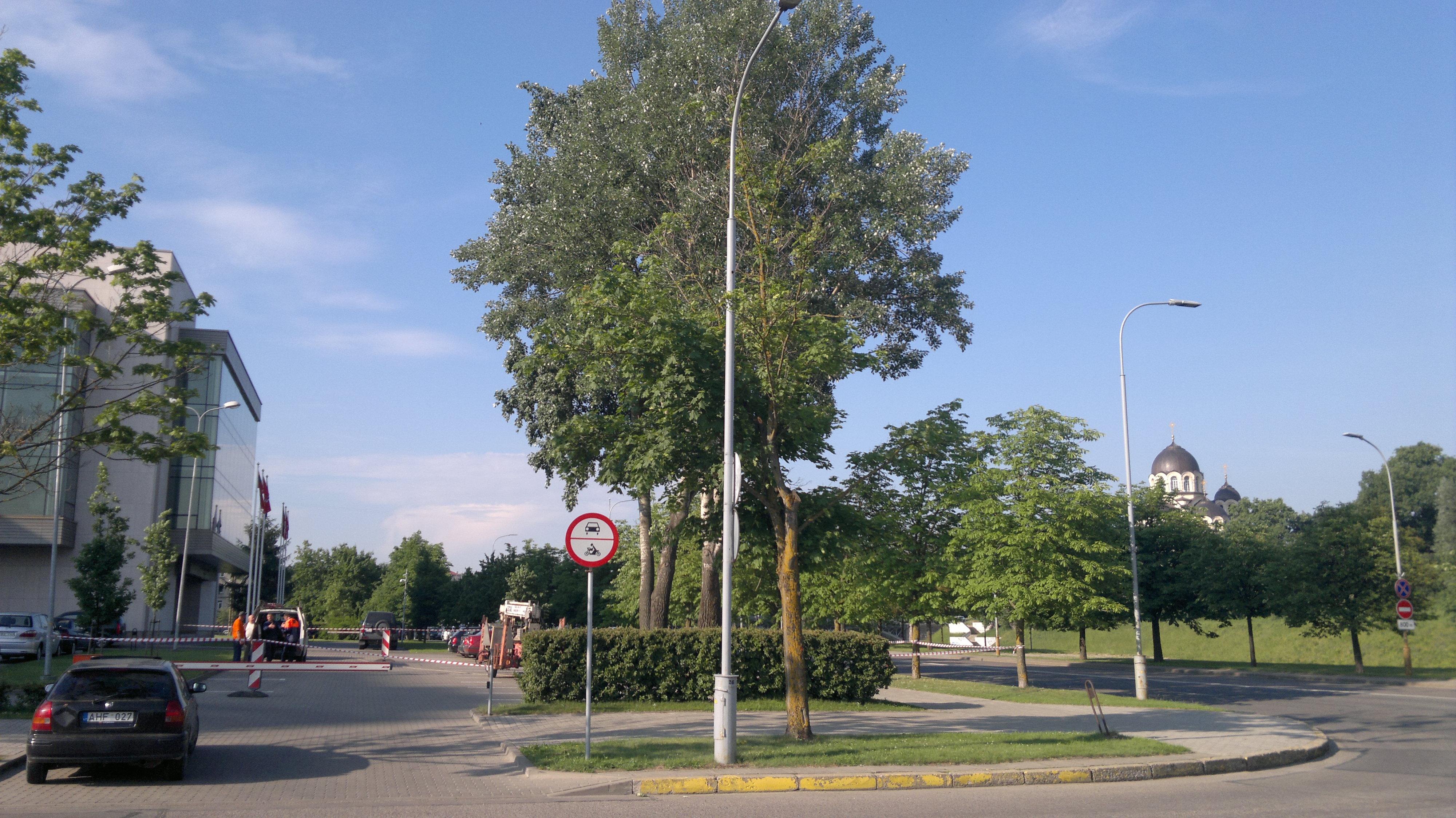 Bobiko-freza-035