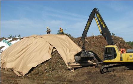 Biomass_cover1