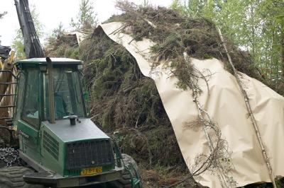 walki-biomass_cover_11